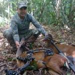 World Slam Adventures Mayan Jungle Safari Brocket Bow